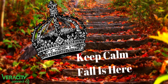 Fall time Veracity Utilituy News Company Blog