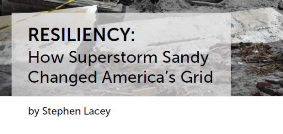 Resiliency White Paper Greentechmedia Cover